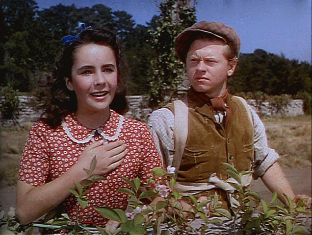 Elizabeth Taylor, national velvet, classic movie actress, clarence brown