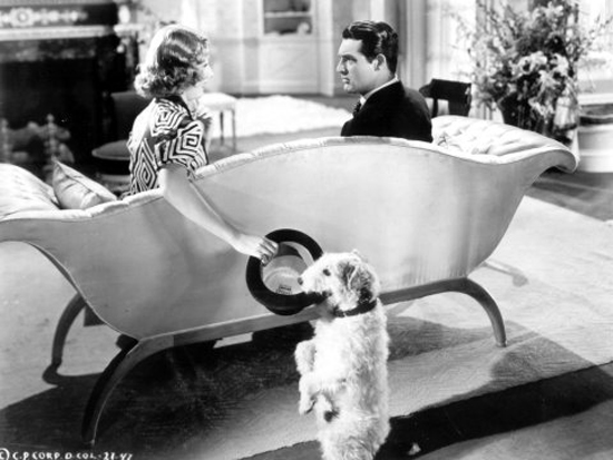 Asta the Dog, aka Skippy, as Mr. Smith in The Awful Truth with Cary Grant and Irene Dunne