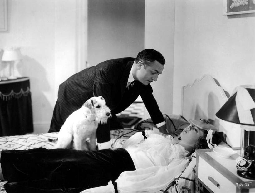 Asta the Dog, William Power, Myrna Loy, The Thin Man