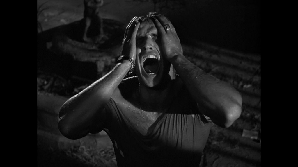 "Marlon Brando screaming ""Stella"" in A Streetcar Named Desire"