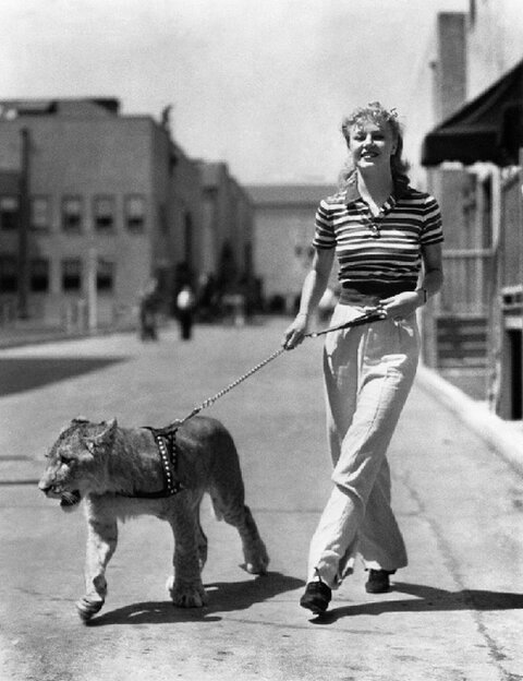 Ginger Rogers with Lion
