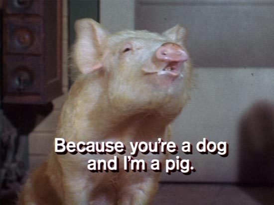 arnold the pig, green acres, because you're a dog and i'm a pig