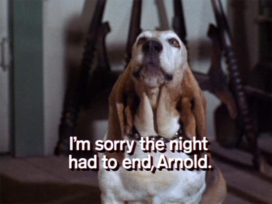 Green Acres, I'm sorry the night had to end, Arnold, screen grab