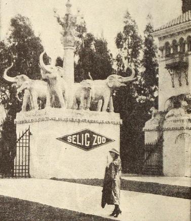 selig zoo 2