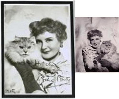 billie burke and her cat