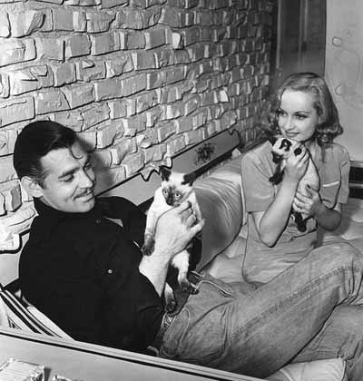 carole lombard and clark gable with siamese cats