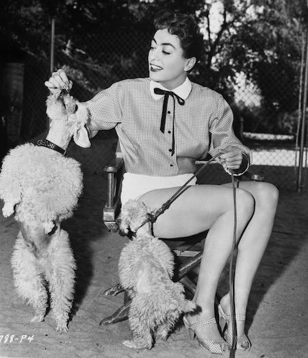 Joan Crawford and dogs