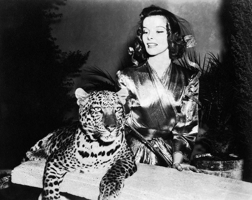 katherine hepburn essay Primary sources: hepburn's son: my mother never thought she was beautiful (2013,  this website is a biography where you can learn about audrey hepburn,.