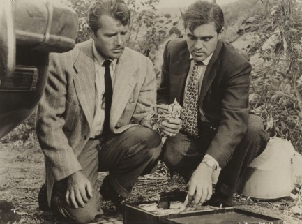 Private Hell 36 (1954) Steve Cochran and Howard Duff