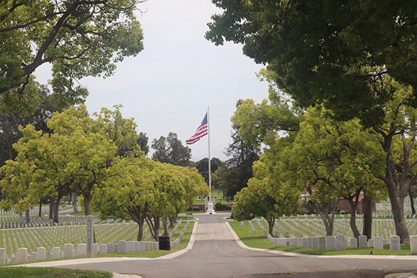 Memorial Day Cemetary Path