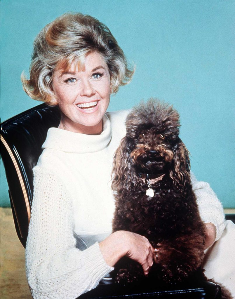 Doris Day with a furry friend, c. 1968. Doris Day worked tirelessly for animal welfare during the latter part of her life, and the Doris Day Animal Foundation is still in operation today.