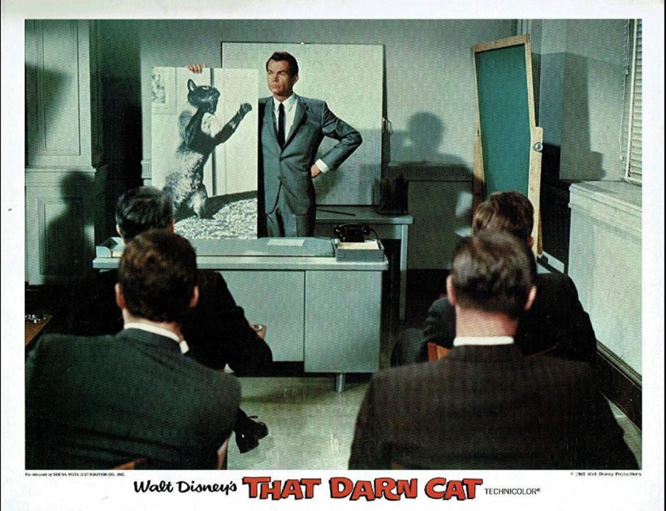 Dean Jones in That Darn Cat! (1965)