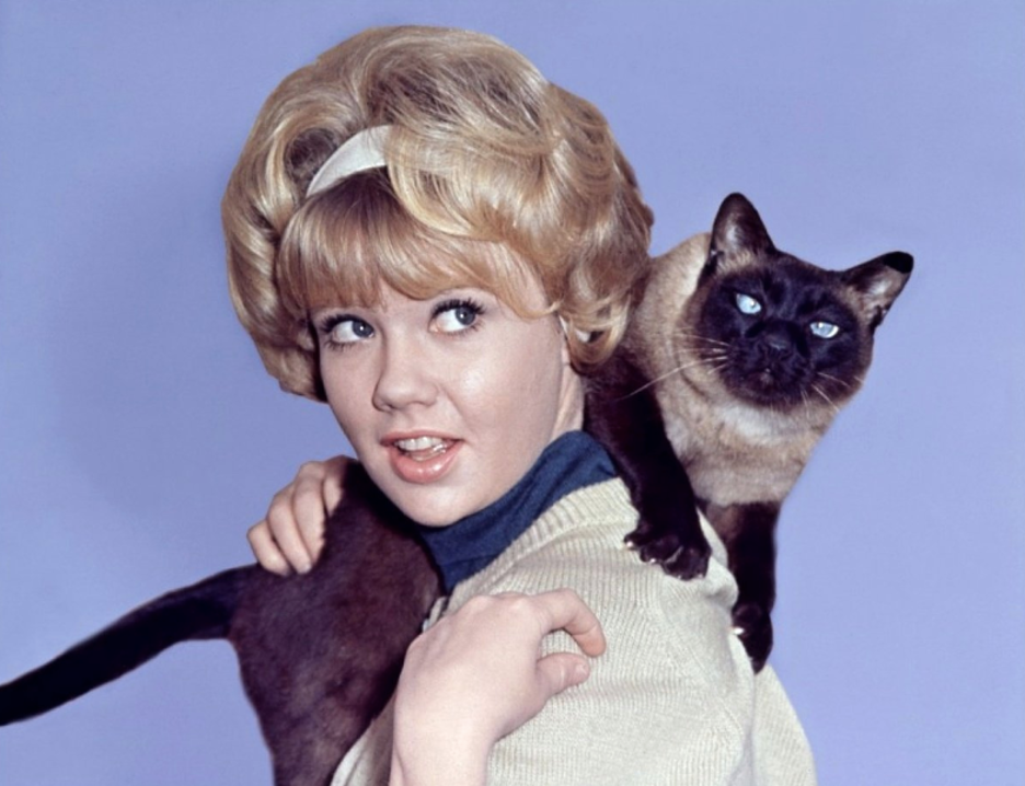 Hayley Mills in That Darn Cat! (1965)