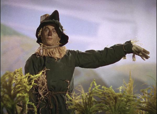 Wizard of Oz Scarecrow
